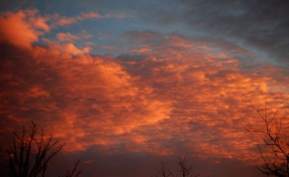Orange clouds of sunset over Lexington in January 2014