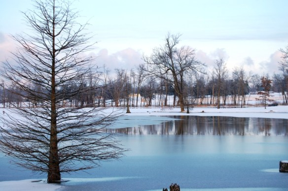 Jacobson Lake in Lexington, KY is iced over