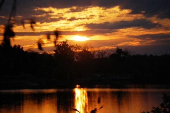 Sunrise glow over Jacobson Lake in Lexingotn