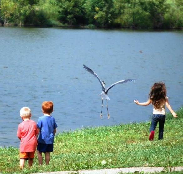 The Curiosity of Children