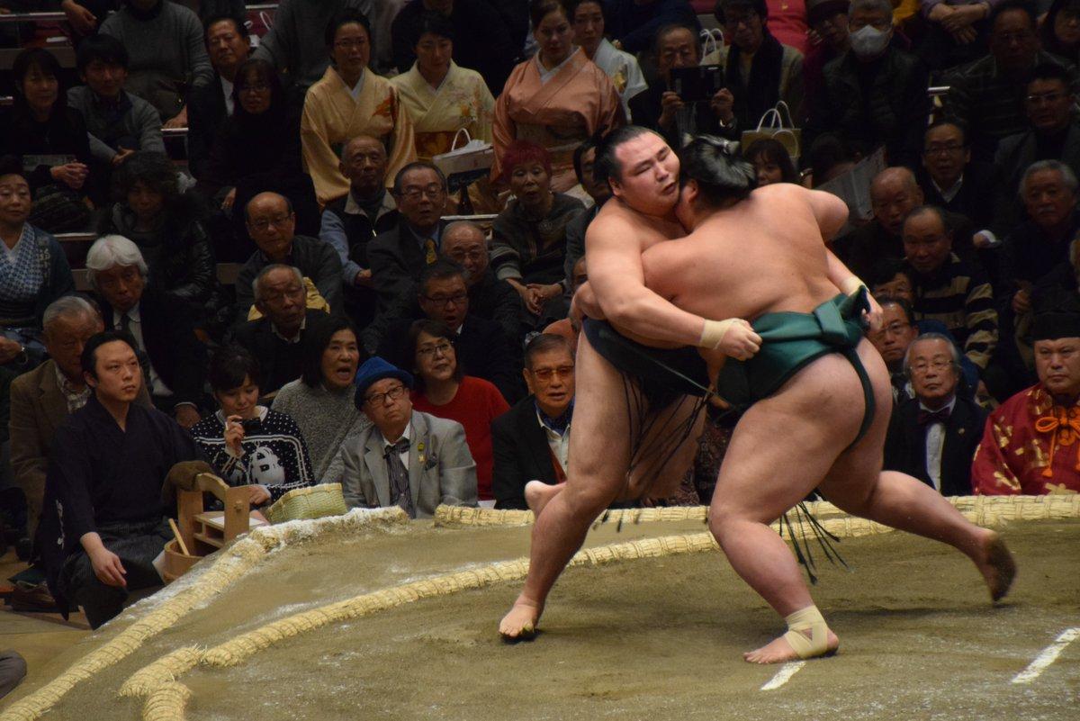 Hatsu 2019, día 6 - Y hoy le toca a Kakuryu