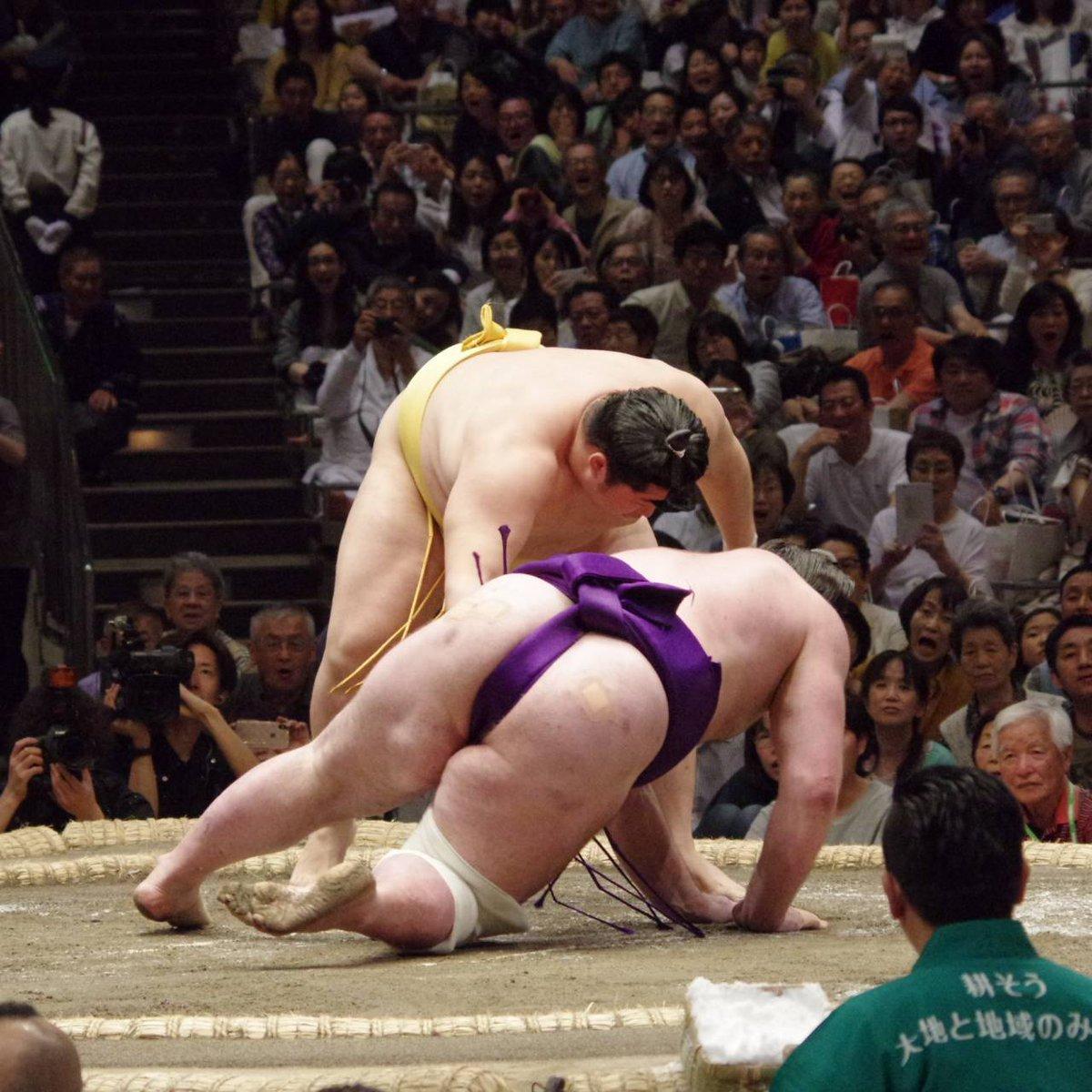 Natsu 2019, día 8 - Endo sorprende a Tochinoshin