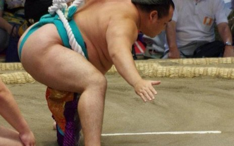 Yokozuna Kakuryu