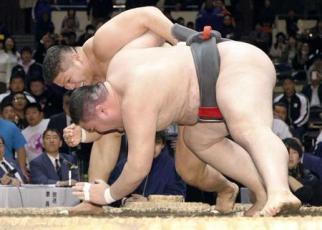 Tanioka Amateur 2019