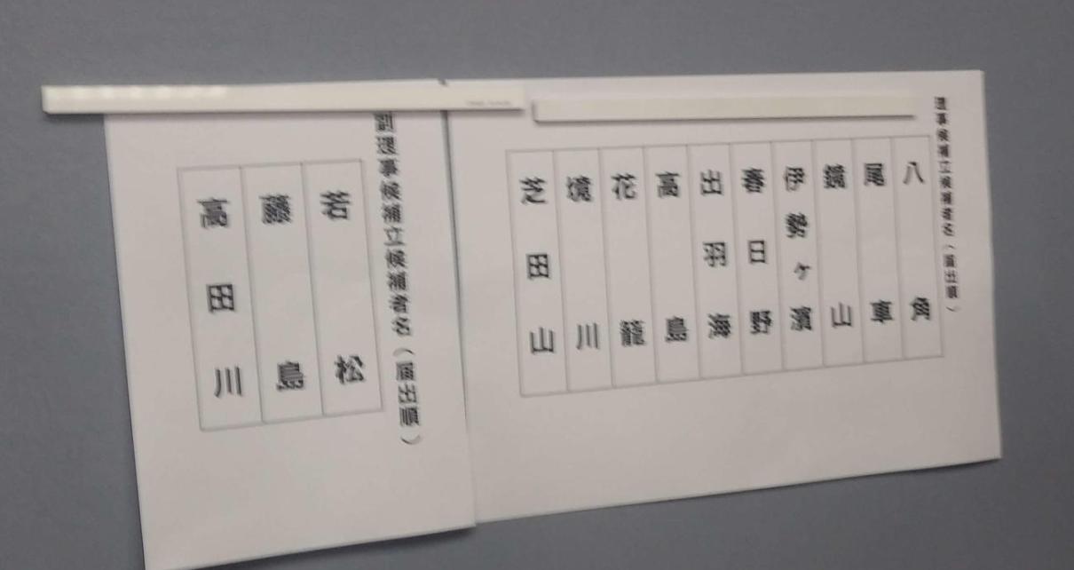 Elecciones Rijikai