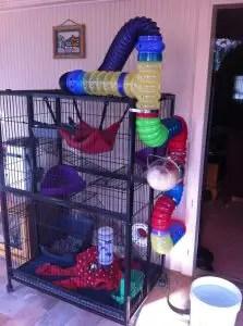 DIY Ferret Cage Idea #1