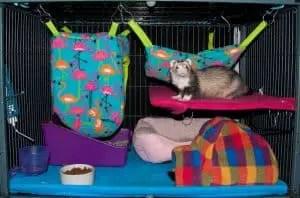 DIY Ferret Cage Idea #2