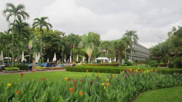 Отель Ботани в Таиланде