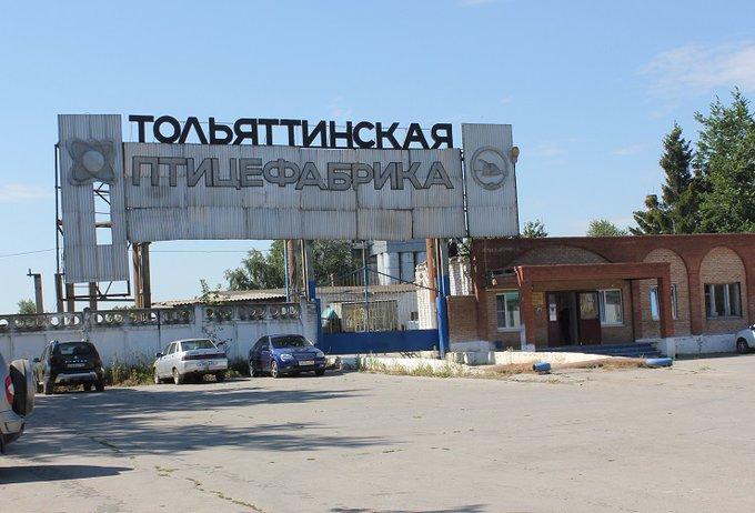 «Тольяттинская птицефабрика» перезапускает производство