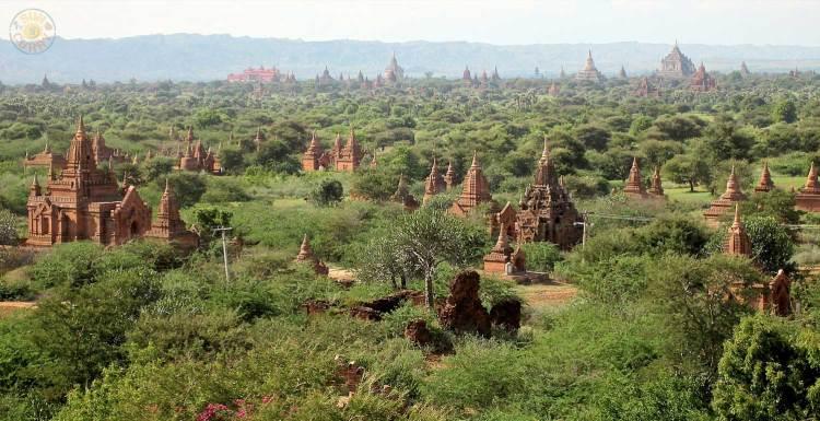 Ebene der Pagoden in Bagan / Myanmar