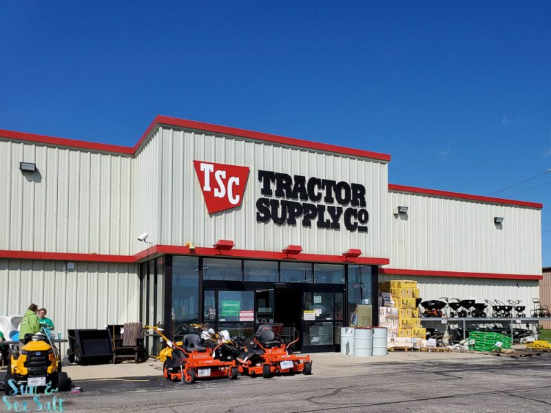 Get supplies for your new cat at Tractor Supply COmpany