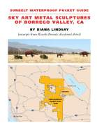 Sky Art Metal Sculptures Borrego Valley 2nd edition ***3rd Edition (9781941384411) now available!
