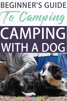 Beginner's Guide to Camping: Camping with a Dog