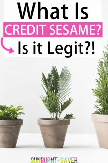 Is Credit Sesame Legit?