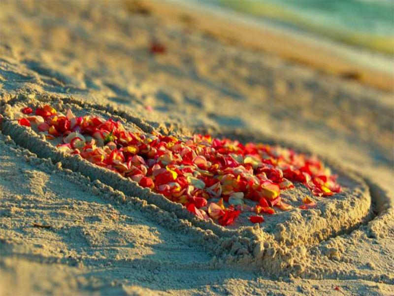 gulf-beach2
