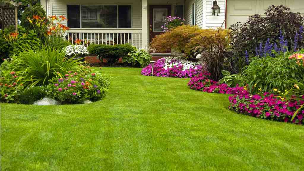 Landscaping Services Katy, TX