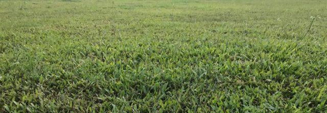 land maintenance suncrest farms inc