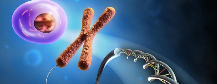 Din livsstil påvirker dine gener