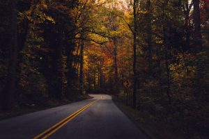 fall-foliage-drive-sundance-vacations-blog-fall-destinations