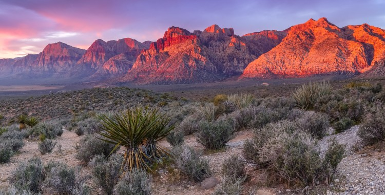 Red Rock Canyon outside of Las Vegas Things to do in Las Vegas Sundance Vacations Destinations