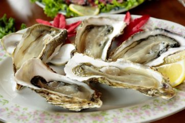 Sundance Vacations Oysters