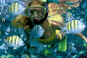 Sundance Vacations Snorkel