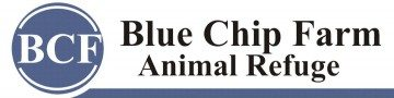 sundance-vacations-blue-chip-farm-animal-refuge1-360x90