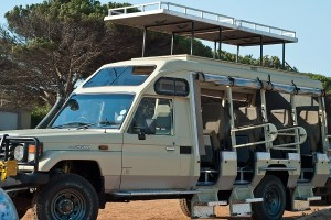 12-seater-open-4x4-toyota-land-cruiser10