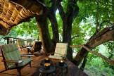 lake_manyara_tree_lodge_4