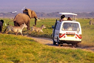 safari-minibuses-car-hire-kenya02