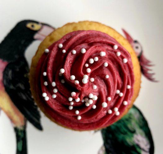Beeren Cupcakes_3