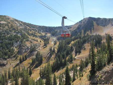 Snowbird resort oktoberfest tram bondinho teleferico