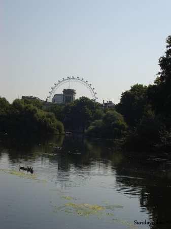 vista da london eye