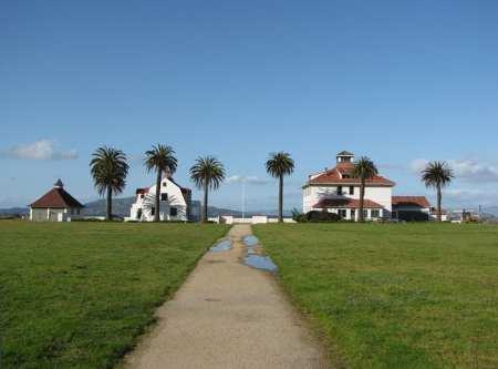 Roteiro de bicicleta por São Francisco - Praia e palmeiras