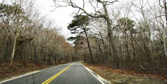 Dicas para dirigir nos EUA - Estrada em Cape Cod