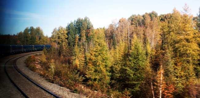 Viajar de trem no Canadá - The Canadian - paisagem da ferrovia