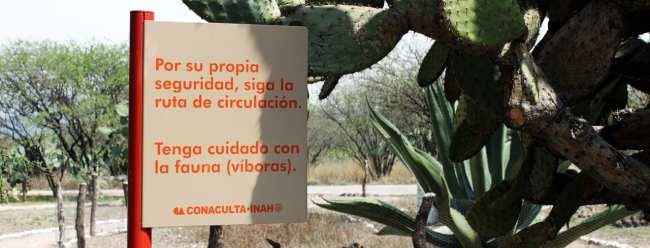 Pirâmides de Tula no México - Cuidados com as víboras!