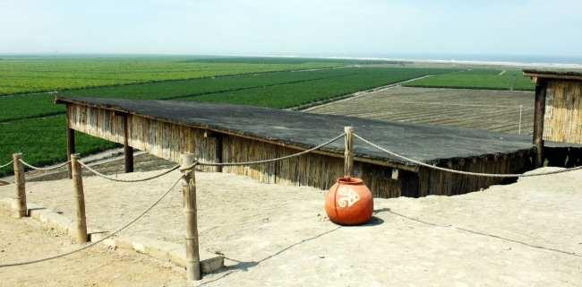 Trujillo Complexo El Brujo e Senhora de Cao - Verde no meio do deserto