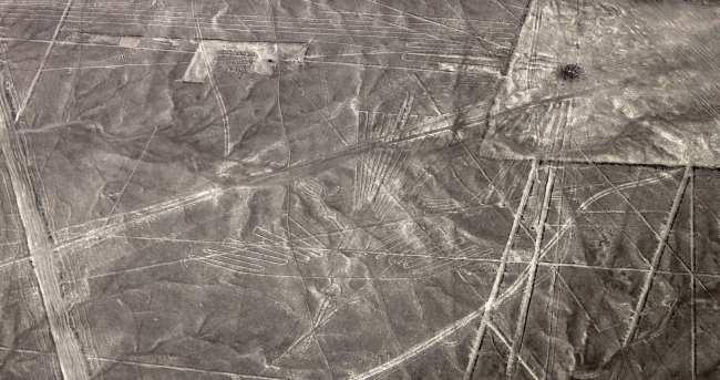 Sobrevoo pelas linhas de Nazca - condor 2