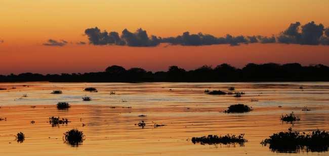 Pantanal Corumbá - 6