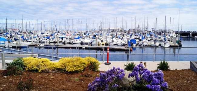 Road trip pela Califórnia de São Francisco a Monterey e Carmel - 1