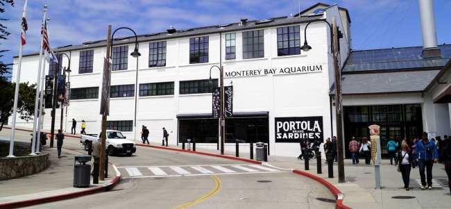 Road trip pela Califórnia de São Francisco a Monterey e Carmel - 6