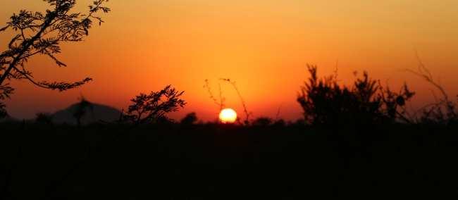 Como é fazer um safári na África do Sul - Madikwe Game Reserve 9