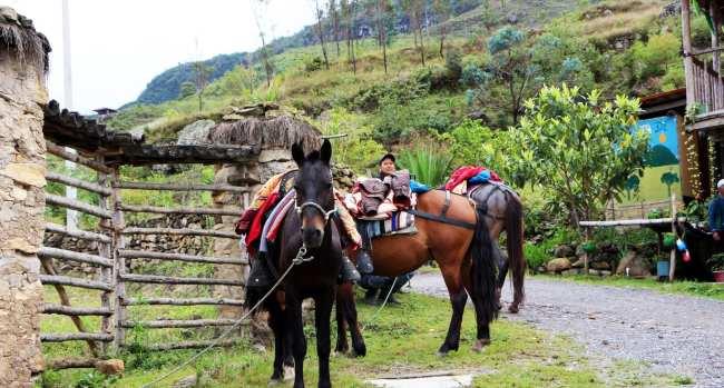 Cataratas de Gocta Amazonas Peru - 16