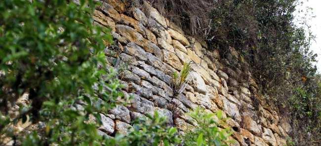 Fortaleza de Kuelap, Chachapoyas, Peru - 4