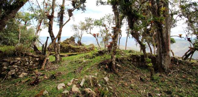 Fortaleza de Kuelap, Chachapoyas, Peru - 11