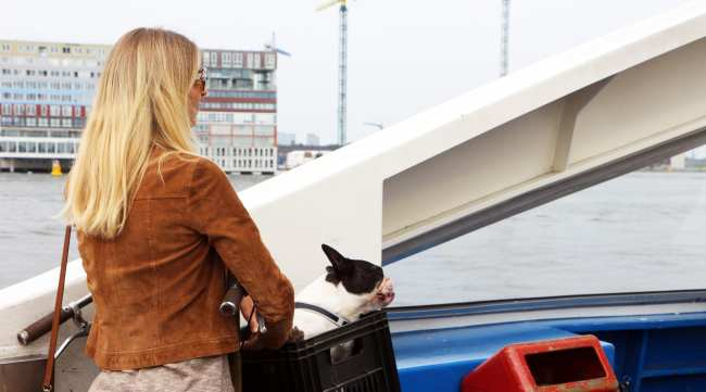 Transporte em Amsterdam - 07