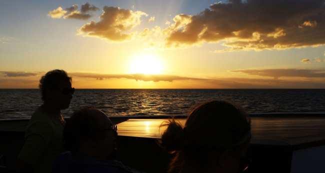 Roteiro por Naples, Everglades e Marco Island - 11