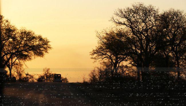 Kruger Park, safári pela África do Sul - 18