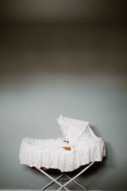 Photos - Madeleine